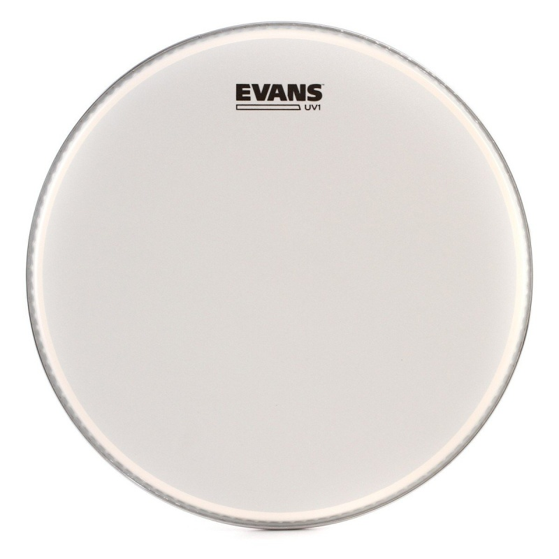 Evans UV1 Coated 16in Drum Head