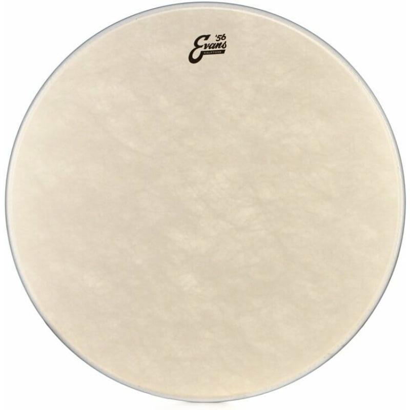 Evans Calftone 13in Drum Head