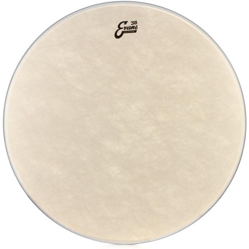 Evans Calftone 8in Drum Head
