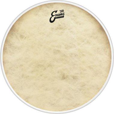 Evans EQ4 Calftone 20in Bass Drum Head